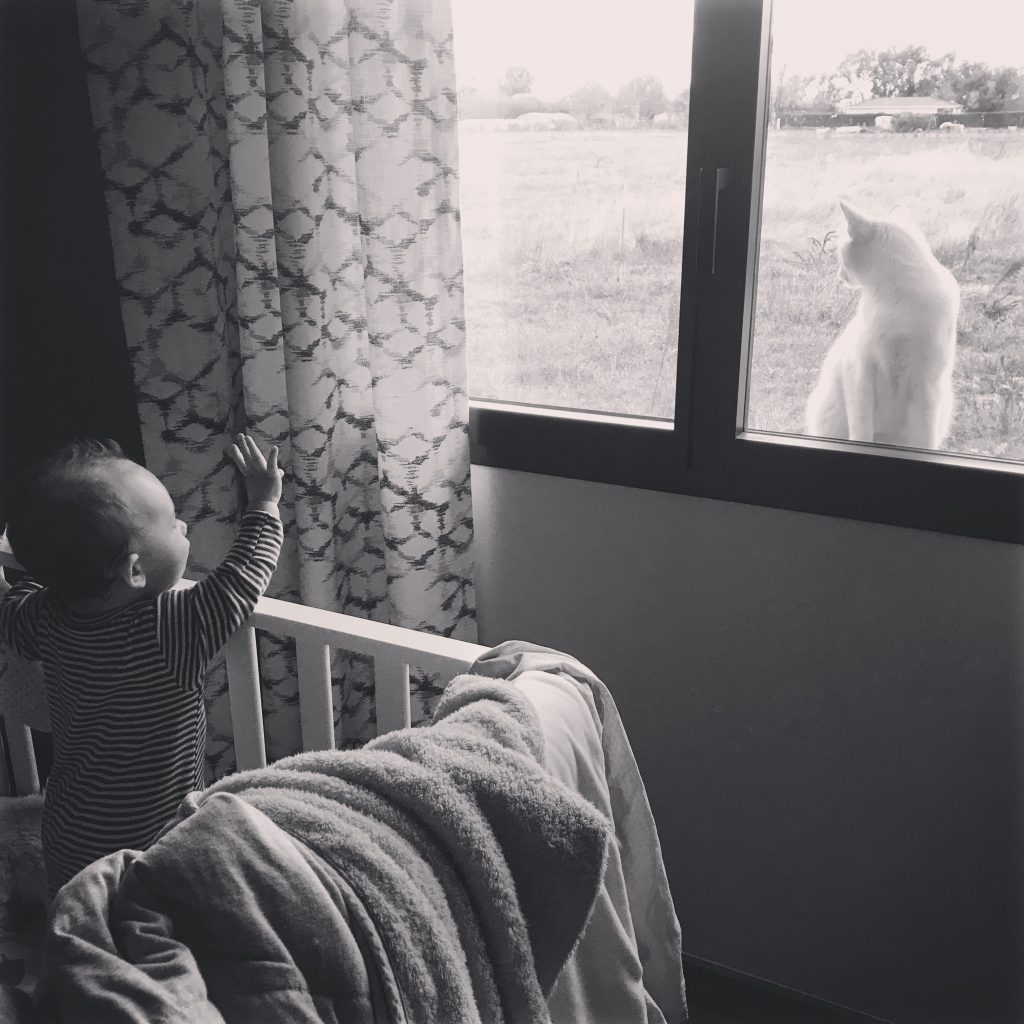 baby in his bed waving to a cat outside the room window