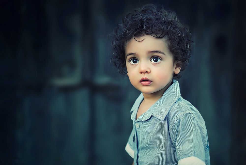 Handsome Toddler boy with black curly hair